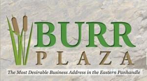 Burr logo